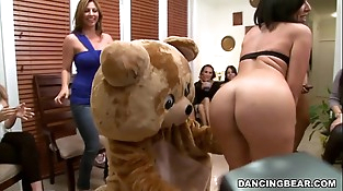 The Muthafucking Dancing Bear in the House! See out! (db9376)